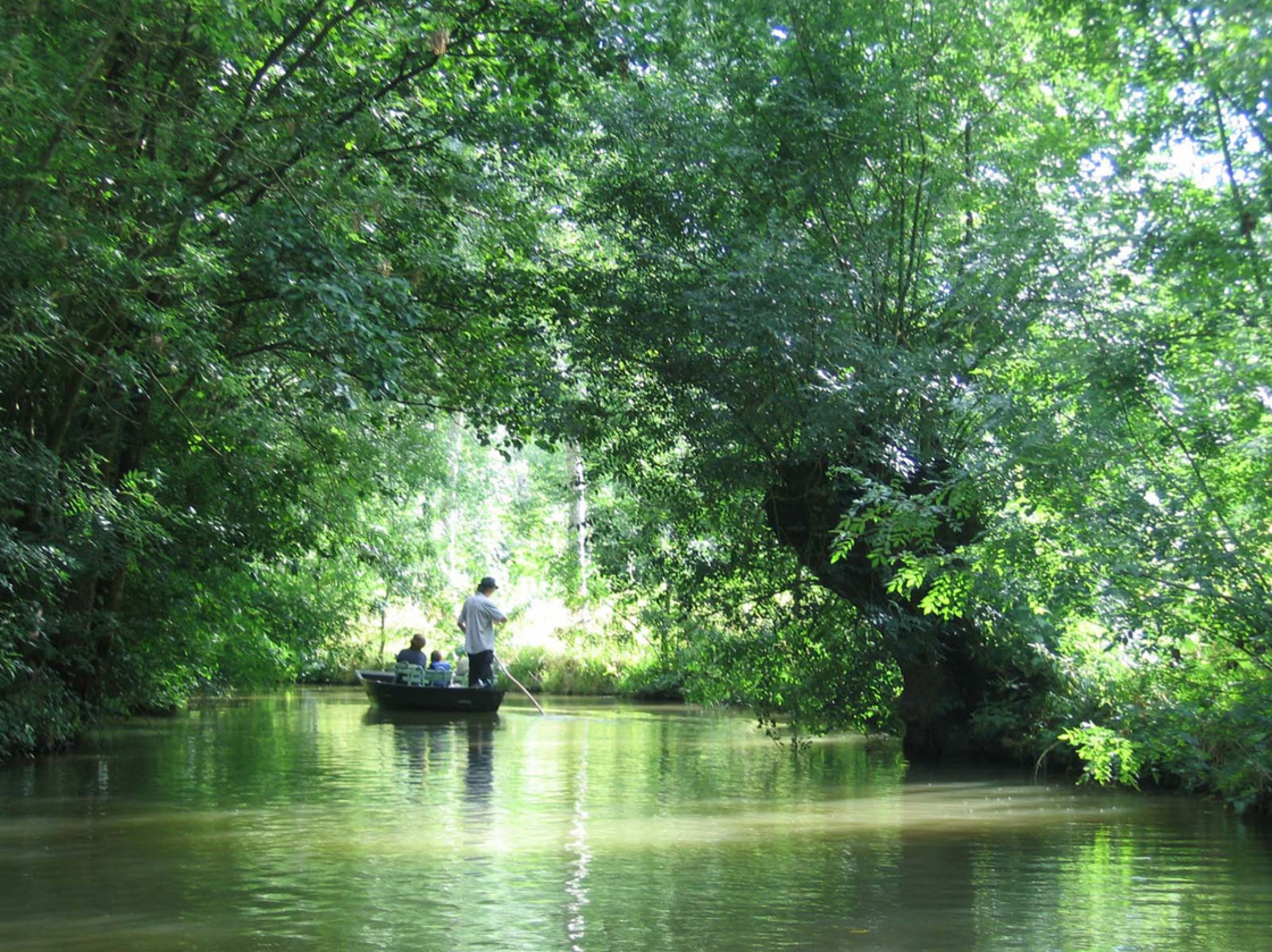 Balade dans les marais Poitevin