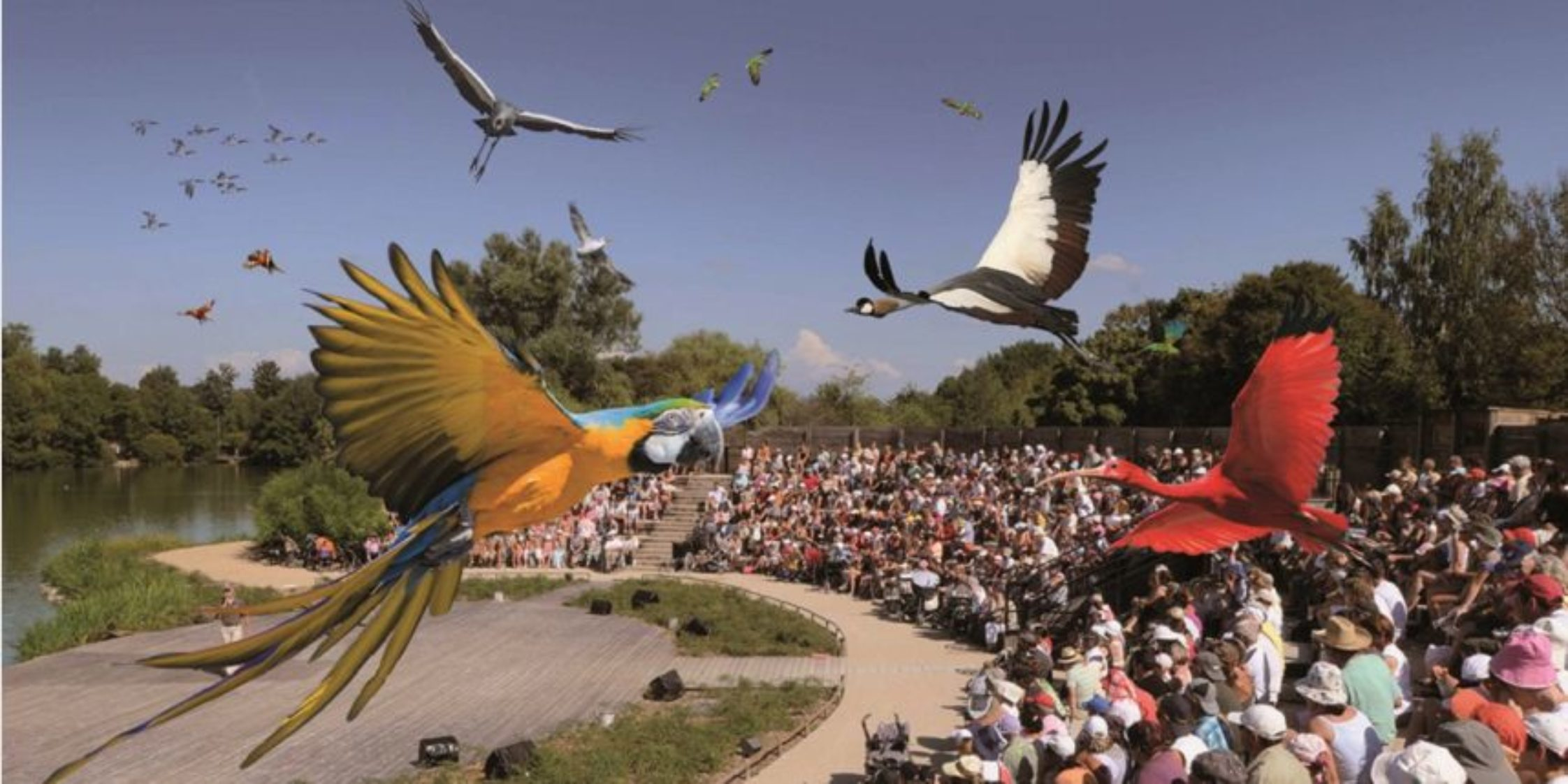 Le Parc des Oiseaux : à visiter absolument