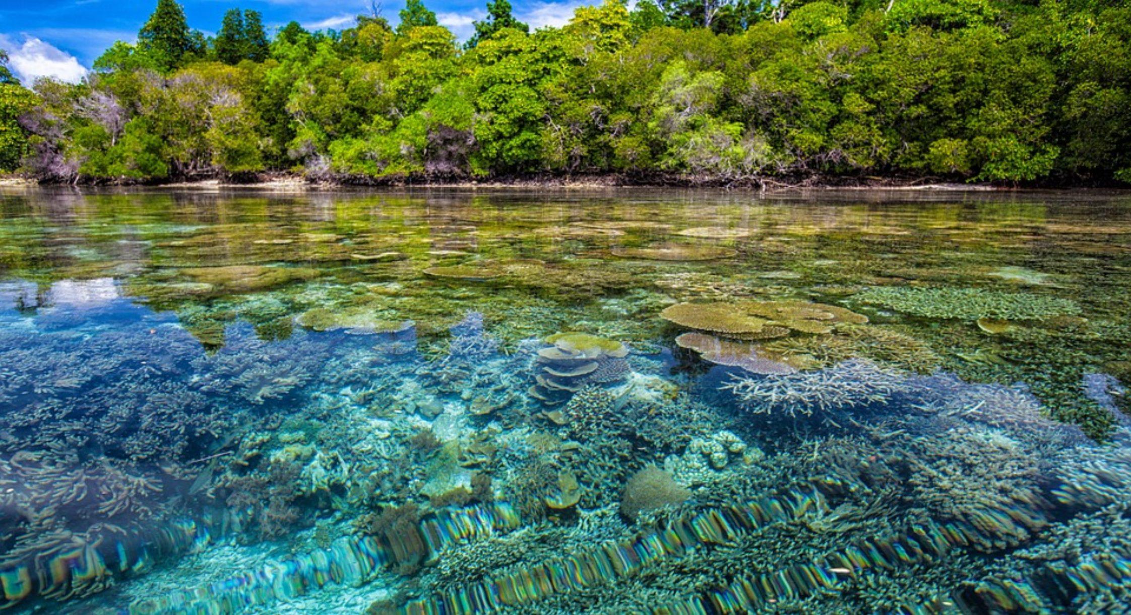 L'archipel indonésien, une adresse idéale pour vivre des moments exceptionnels