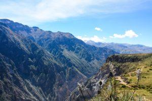 Le canyon Colca au Pérou