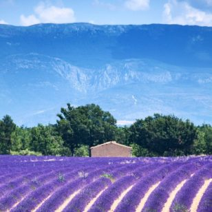 Top 5 des destinations dans le sud de la France