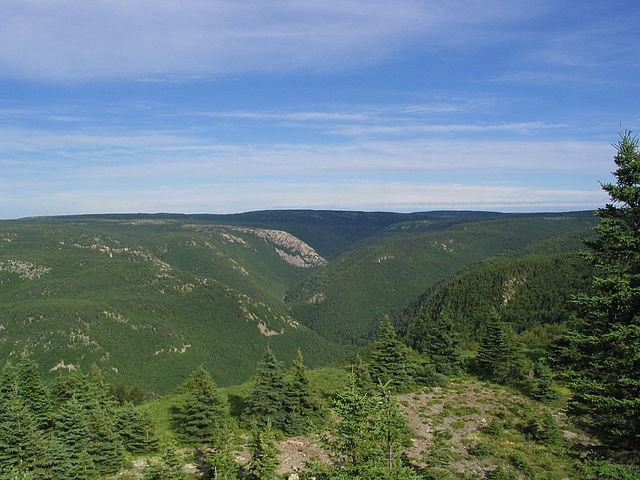 Sommet Parc national des Hautes Terres du Cap Breton